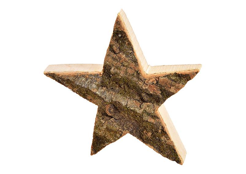 hvězda z dřevěné kůry 20x20x4 cm