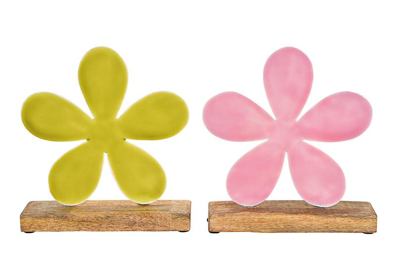 květina na podstavci 22x20x5 cm, kov a mangové dřevo - 2 druhy